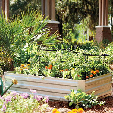 raised garden bed educational Improvements