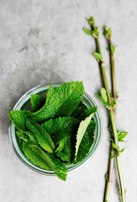 Peppermint herbal tea to soothe an upset stomach | Girlfriend is Better