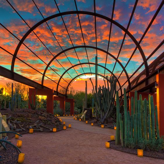 Scottsdale Arizona sunset | Travel guide | Girlfriend is Better