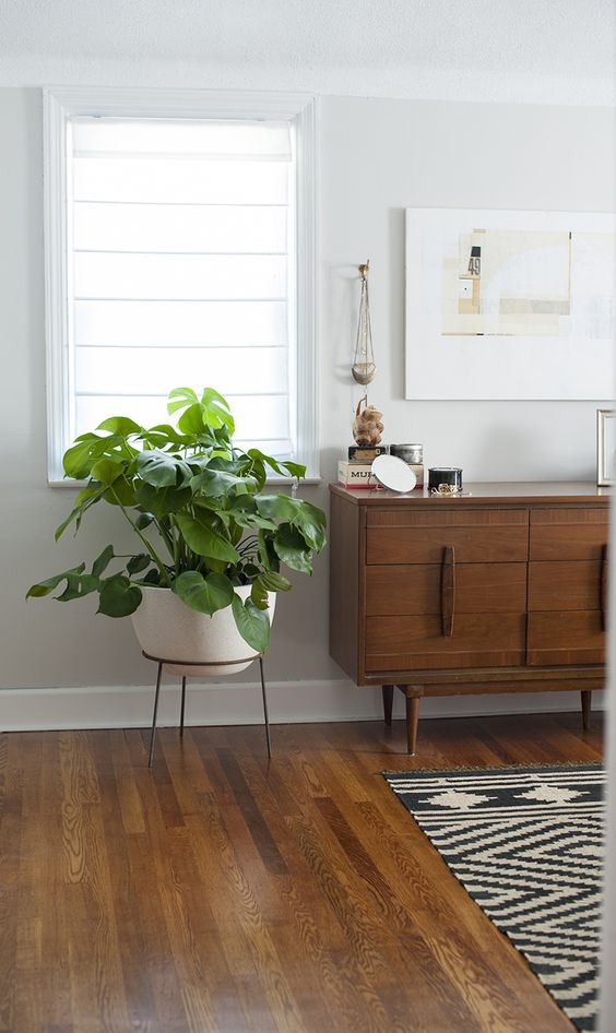 console styling mid-century modern | dresser plants monstera deliciosa | Girlfriend is Better