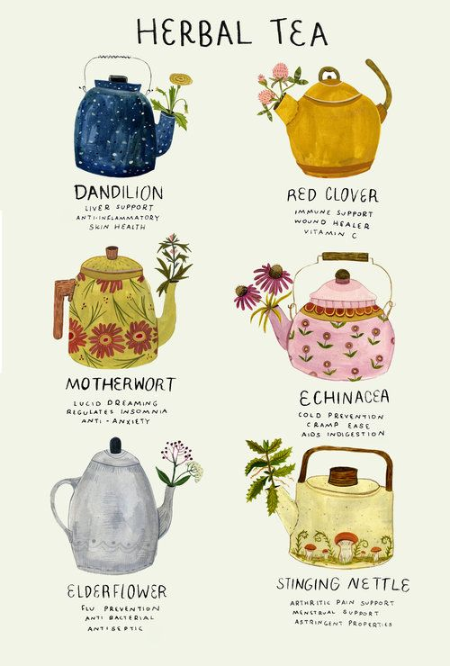 Afternoon Tea | Herbal Tea Types | Girlfriend is Better