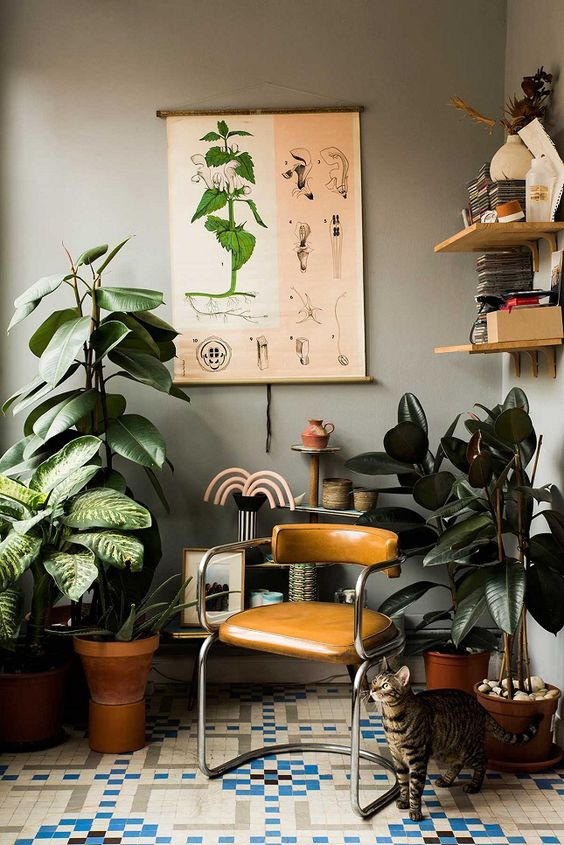 rubber plant | retro brown leather chair mid-century modern graphic tile  | Girlfriend is Better