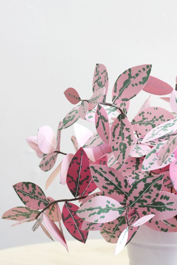 pink plants | paper fittonia leaves diy handcrafted crafts | Girlfriend is Better